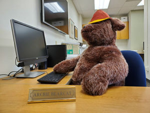 stuffed bearcat sitting at desk