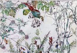 Image of Art: Clover Small Vetch Seed Pods and Horsetails, 1996